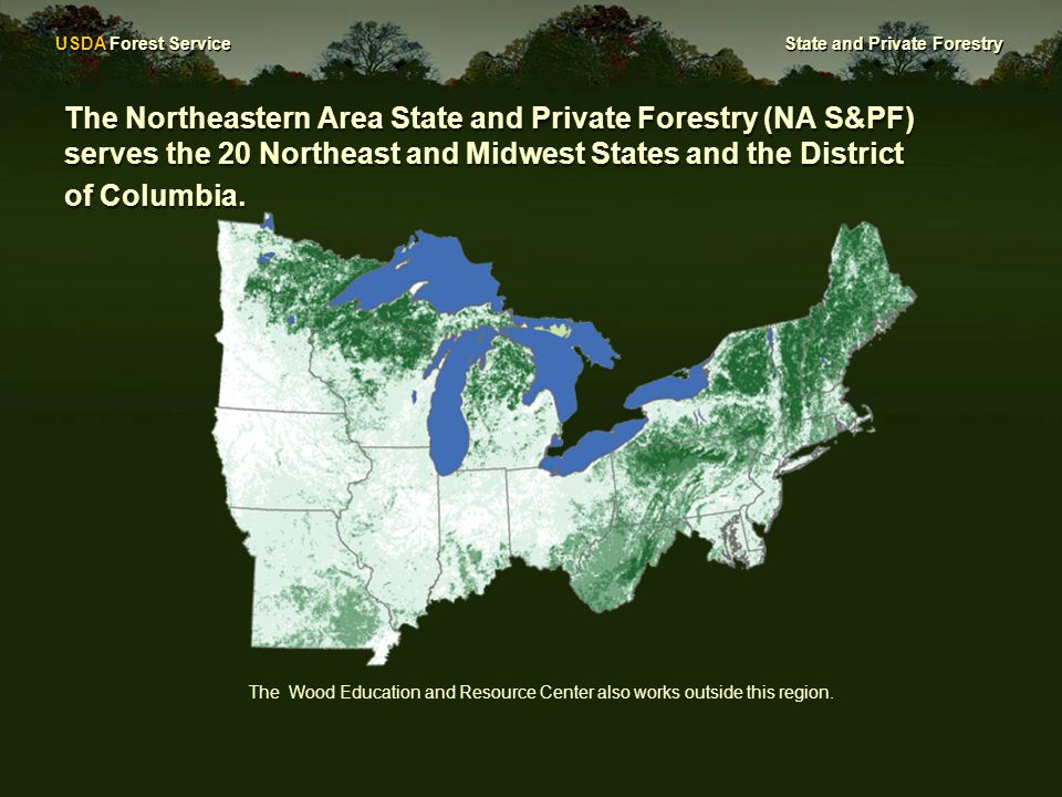 USDA Forest Service State and Private Forestry The Northeastern Area State and Private Forestry (NA S&PF) serves the 20 Northeast and Midwest States and the District of Columbia.