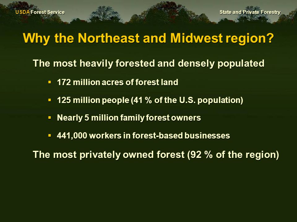 USDA Forest Service State and Private Forestry Our Vision: The Northeastern Area State and Private Forestry is a conservation leader that supports forest sustainability providing the best for both people and the environment now and into the future.