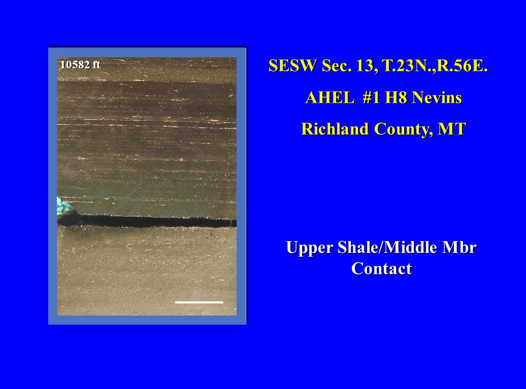 SESW Sec. 13, T.23N.,R.56E. AHEL #1 H8 Nevins Richland County, MT Upper Shale/Middle Mbr Contact 10582 ft