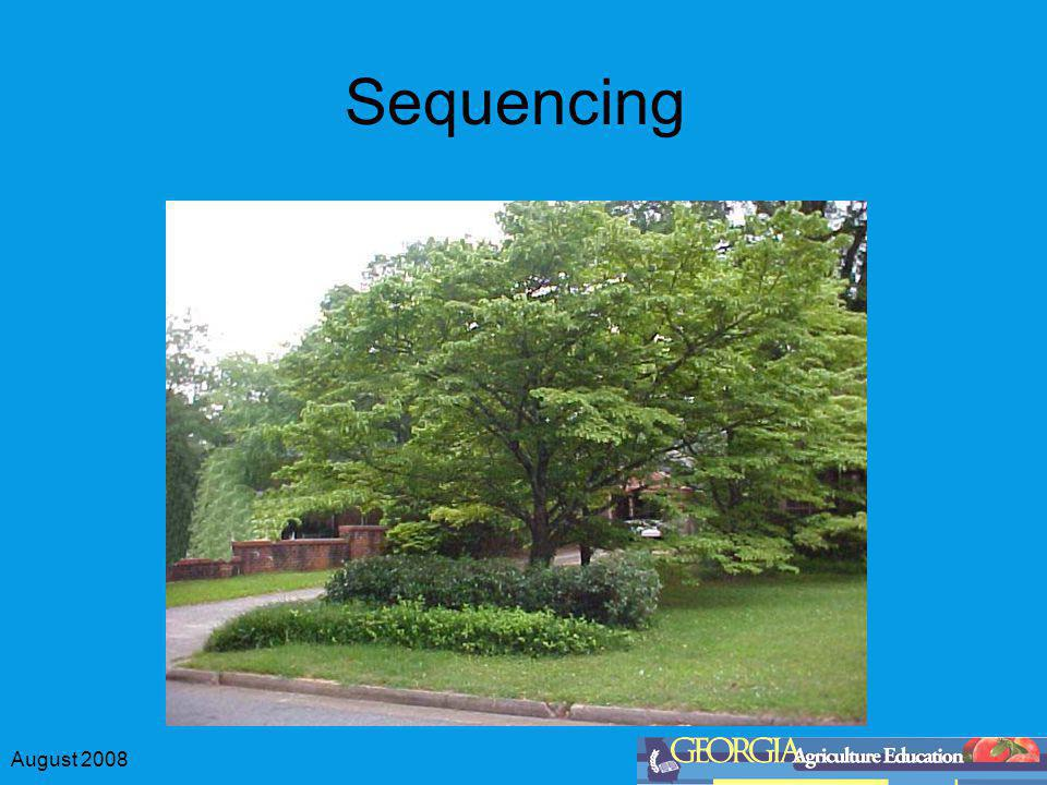 August 2008 Sequencing Positioning objects according to size Small – medium – large Provide a smoother line for the eye to follow Provide views of all