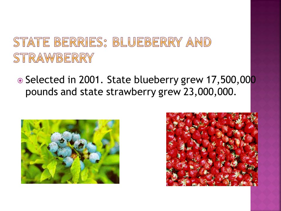  Selected in 2001. State blueberry grew 17,500,000 pounds and state strawberry grew 23,000,000.