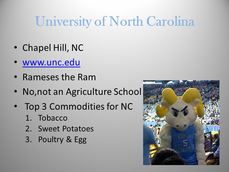 University of North Carolina Chapel Hill, NC www.unc.edu Rameses the Ram No,not an Agriculture School Top 3 Commodities for NC 1.Tobacco 2.Sweet Potatoes 3.Poultry & Egg