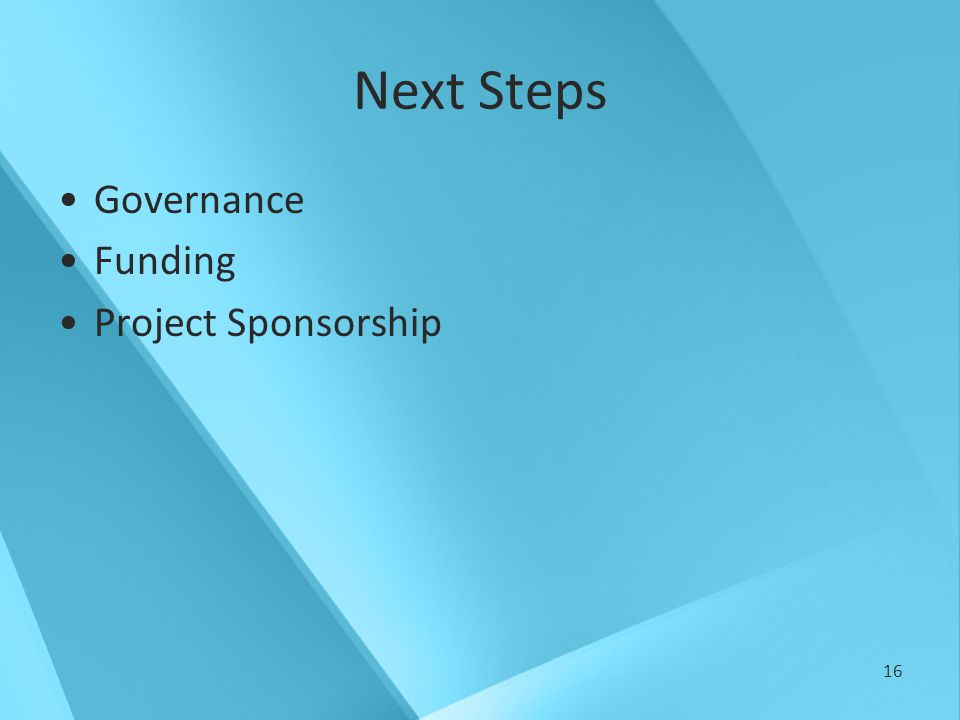16 Next Steps Governance Funding Project Sponsorship