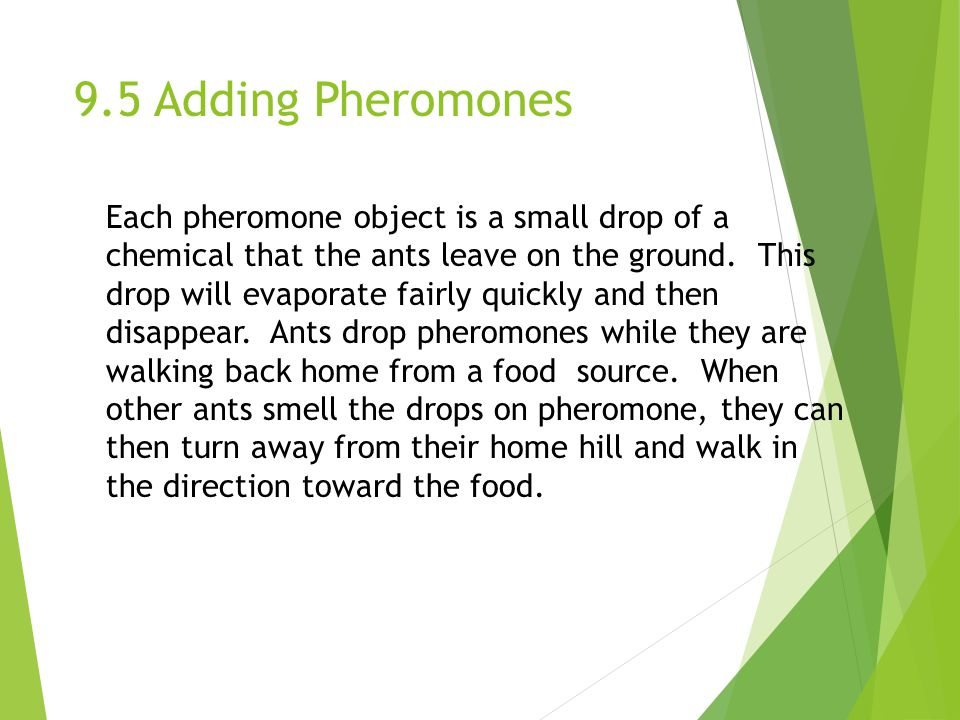 9.5 Adding Pheromones Each pheromone object is a small drop of a chemical that the ants leave on the ground.