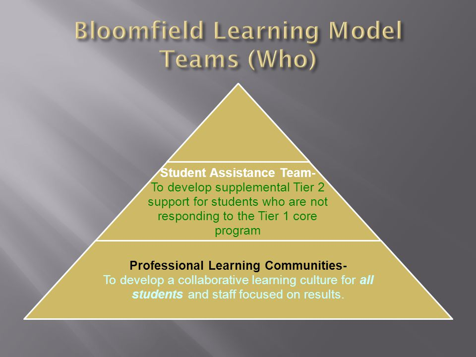 IEP Team- Develop an Individualized Educational Program based on assessment of the whole child.