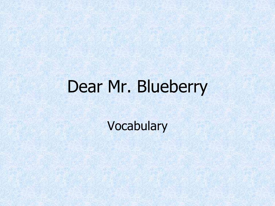 Dear Mr. Blueberry Vocabulary