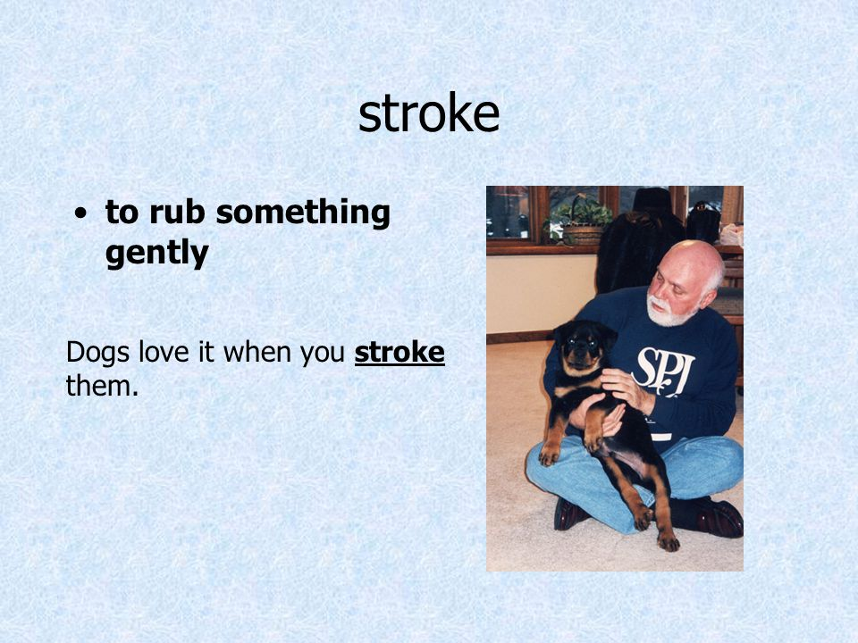 stroke to rub something gently Dogs love it when you stroke them.