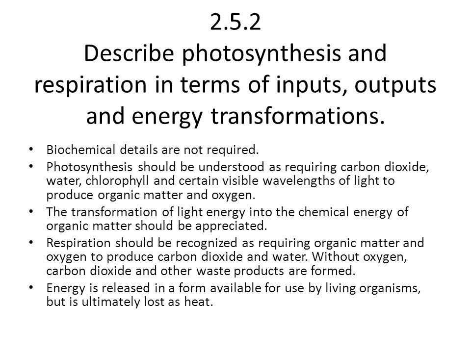 2.5.3 Describe and explain the transfer and transformation of energy as it flows through an ecosystem.