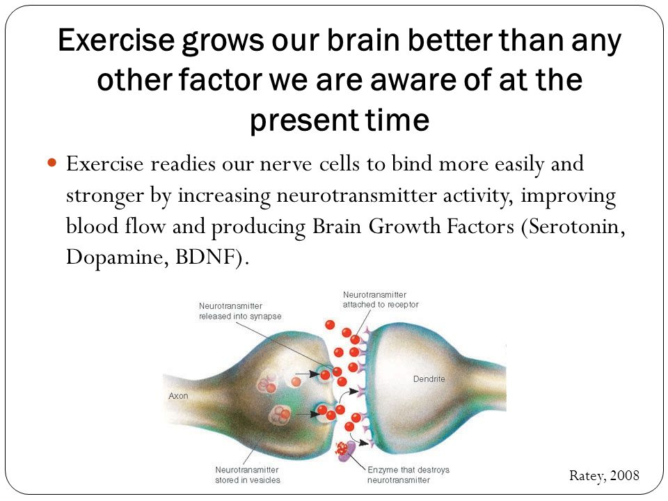 The body learns ten times faster than the brain and forgets ten times slower.
