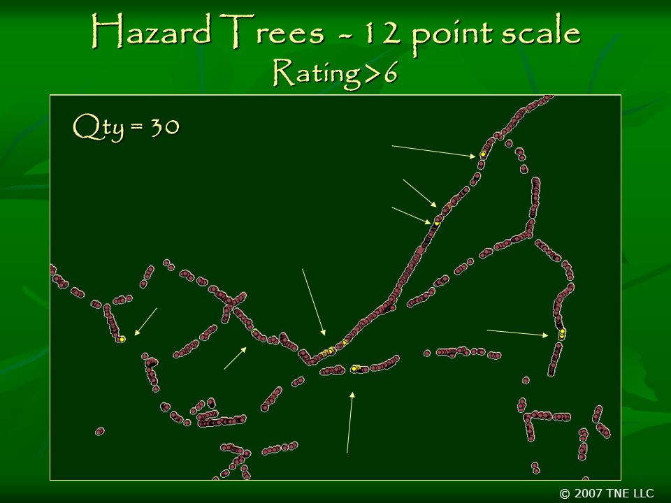© 2007 TNE LLC Hazard Trees - 12 point scale Rating >6 Qty = 30