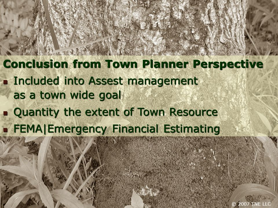 © 2007 TNE LLC Conclusion from Town Planner Perspective Included into Assest management as a town wide goal Included into Assest management as a town wide goal Quantity the extent of Town Resource Quantity the extent of Town Resource FEMA|Emergency Financial Estimating FEMA|Emergency Financial Estimating © 2007 TNE LLC