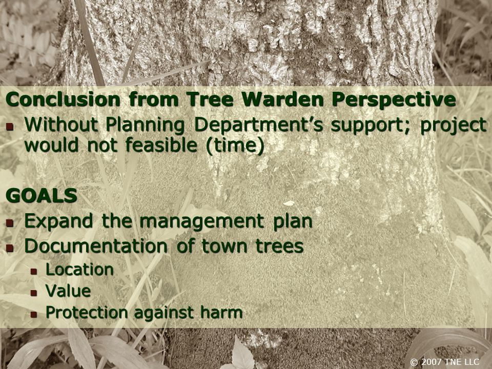 Conclusion from Tree Warden Perspective Without Planning Department's support; project would not feasible (time) Without Planning Department's support; project would not feasible (time)GOALS Expand the management plan Expand the management plan Documentation of town trees Documentation of town trees Location Location Value Value Protection against harm Protection against harm © 2007 TNE LLC