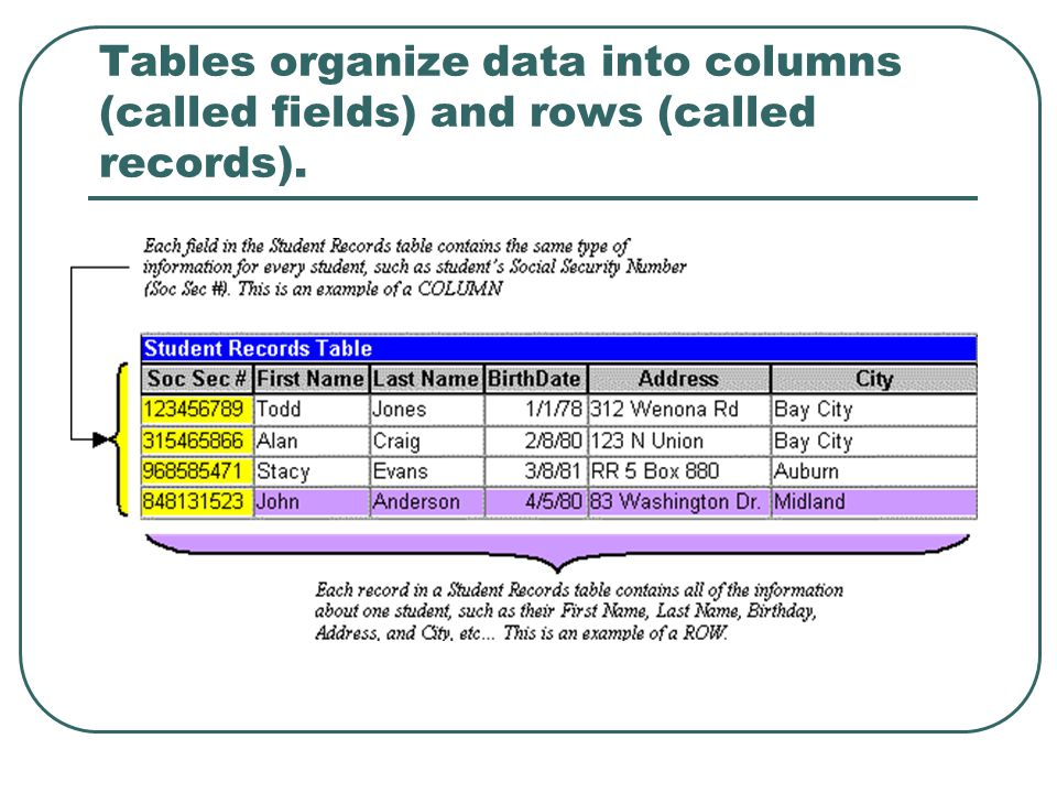 Tables organize data into columns (called fields) and rows (called records).