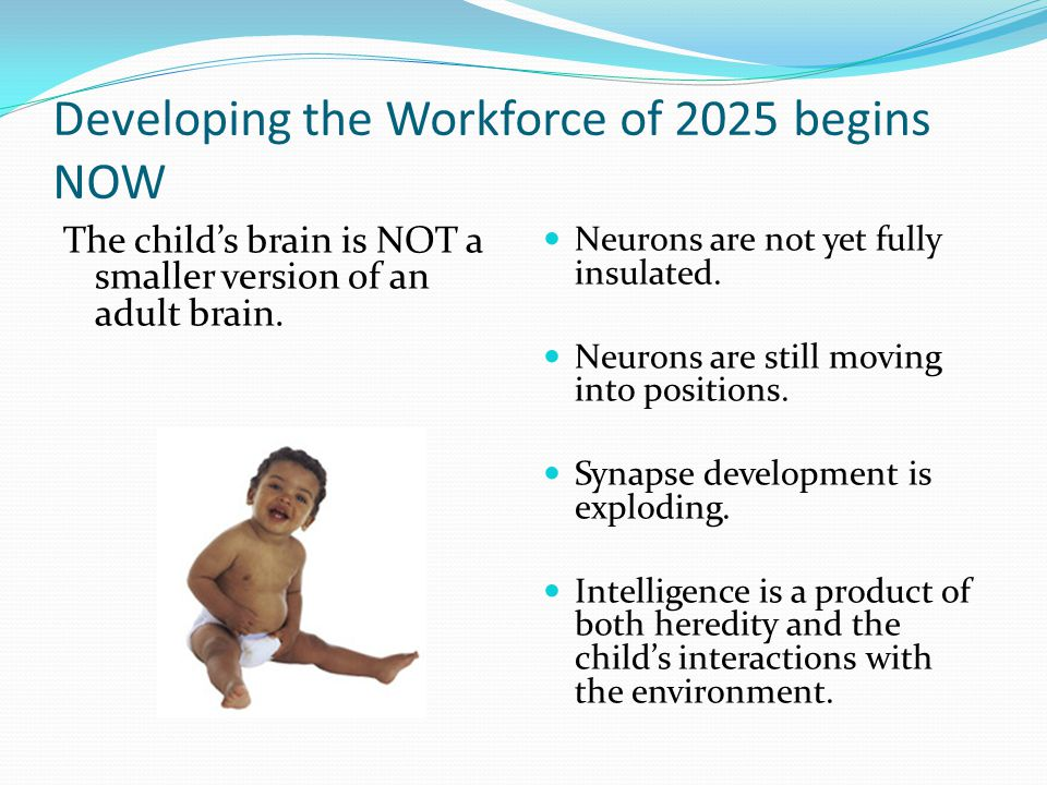 Developing the Workforce of 2025 begins NOW The child's brain is NOT a smaller version of an adult brain. Neurons are not yet fully insulated. Neurons