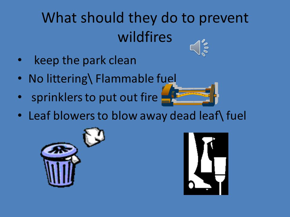 How to prevent wildfires No smoking No campfires No fireworks Clean up dead leaf litter Follow rules!!!