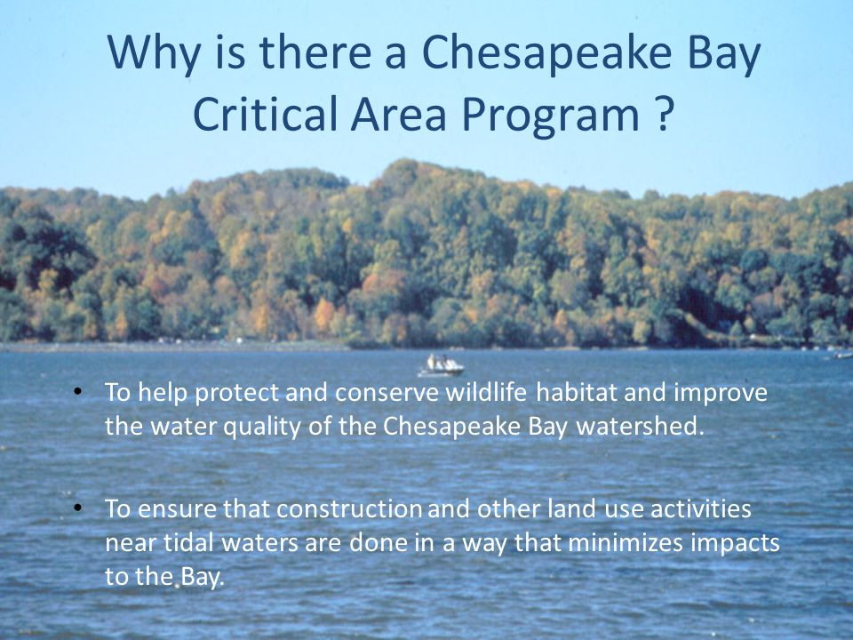 Why is there a Chesapeake Bay Critical Area Program .
