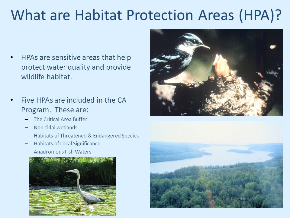 What are Habitat Protection Areas (HPA).
