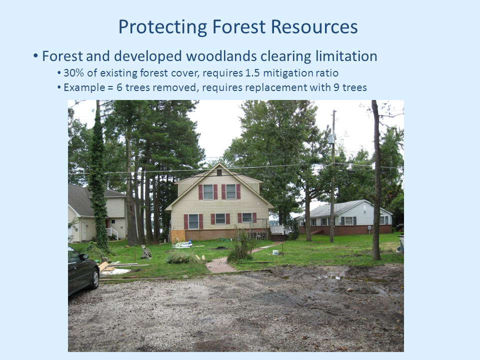 Protecting Forest Resources Forest and developed woodlands clearing limitation 30% of existing forest cover, requires 1.5 mitigation ratio Example = 6 trees removed, requires replacement with 9 trees