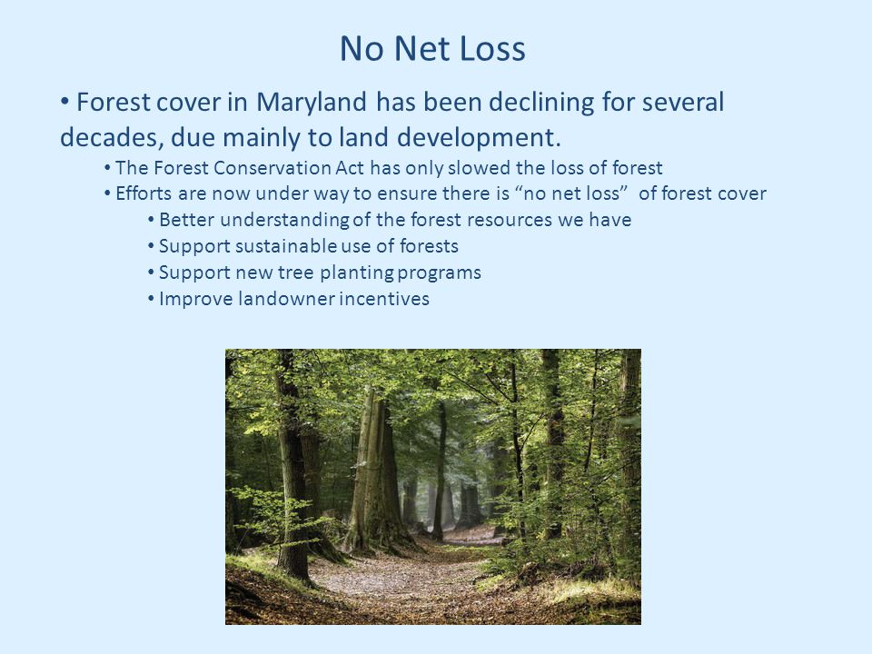 No Net Loss Forest cover in Maryland has been declining for several decades, due mainly to land development.