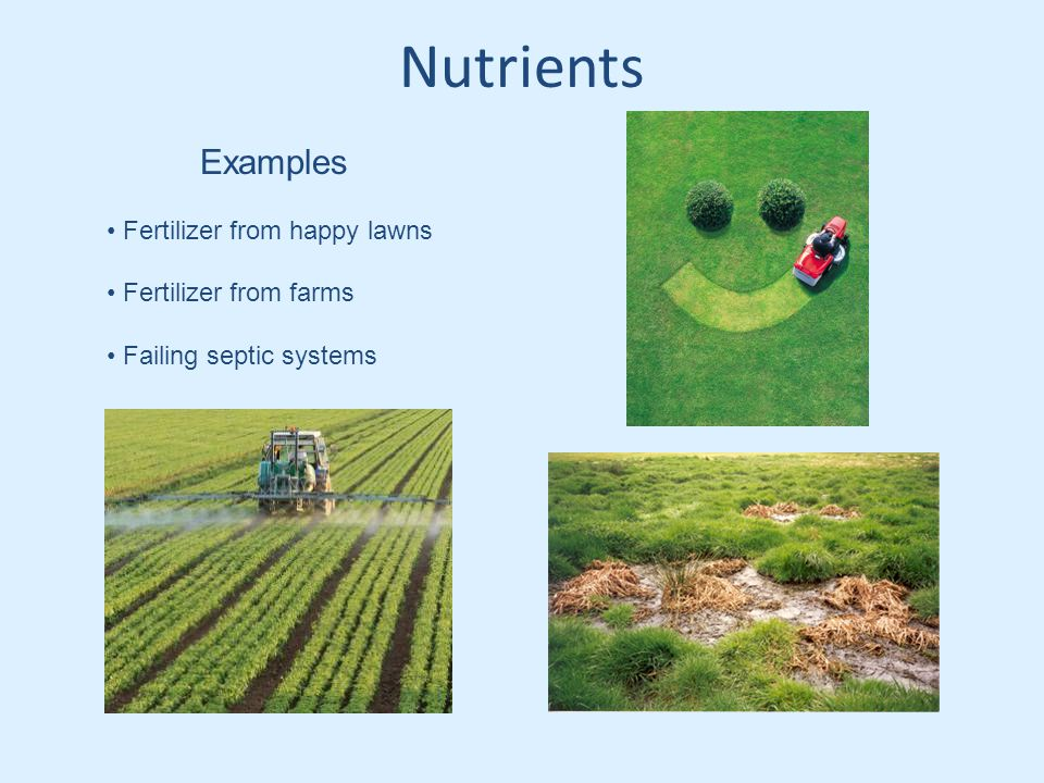 Nutrients Examples Fertilizer from happy lawns Fertilizer from farms Failing septic systems