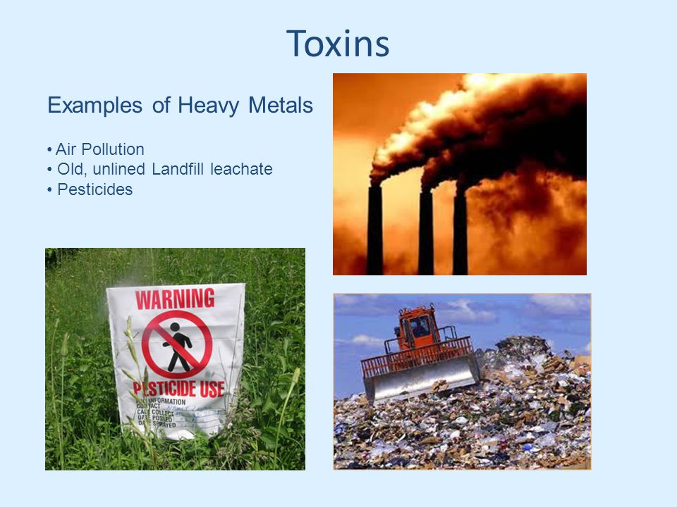 Toxins Examples of Heavy Metals Air Pollution Old, unlined Landfill leachate Pesticides