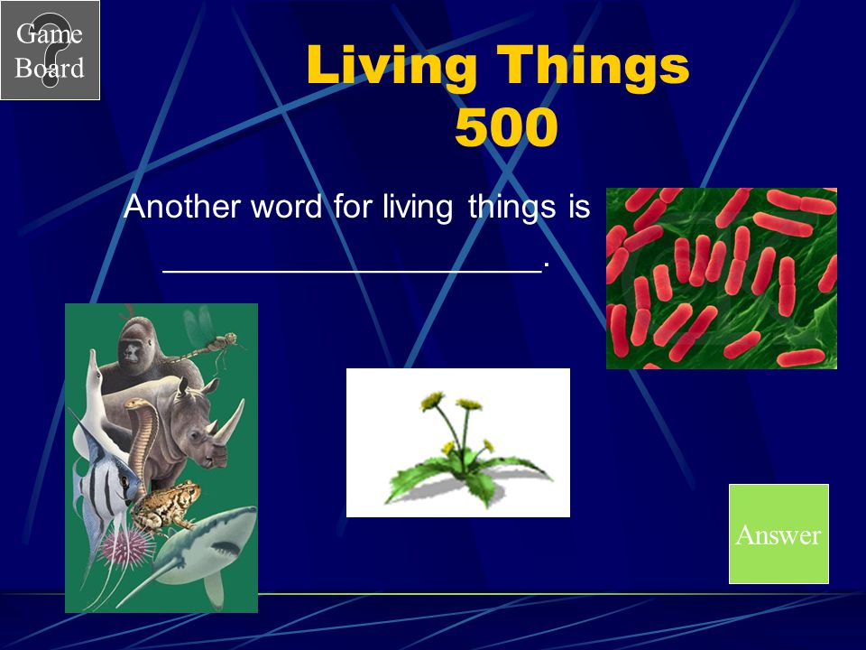 Game Board Living Things 500 Another word for living things is ____________________. Answer