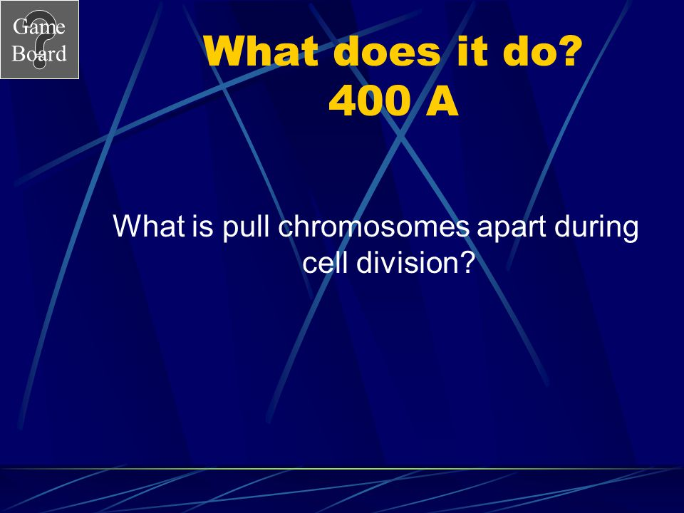 Game Board What does it do? 400 A What is pull chromosomes apart during cell division?
