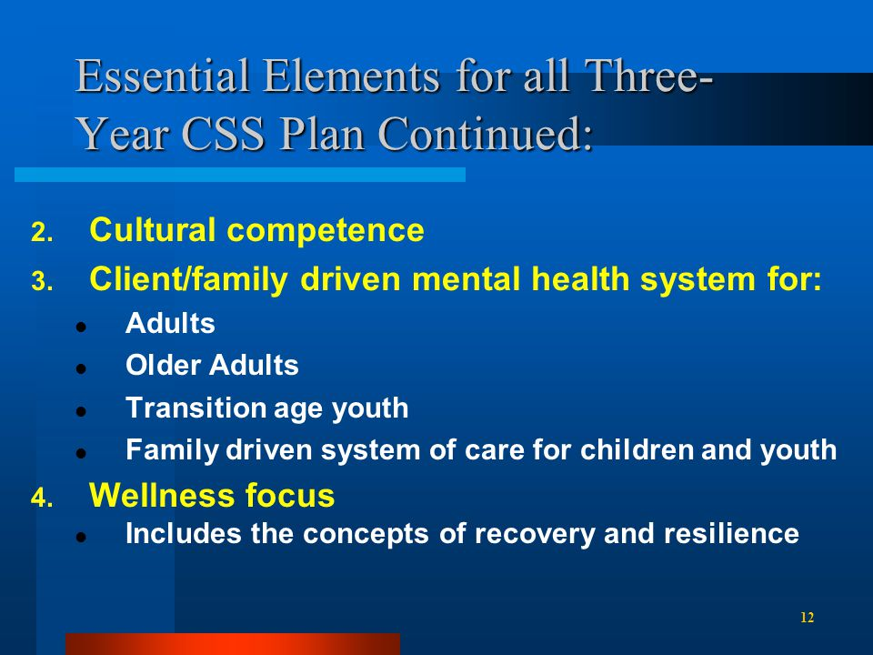 Essential Elements for all Three- Year CSS Plan Continued: 2.