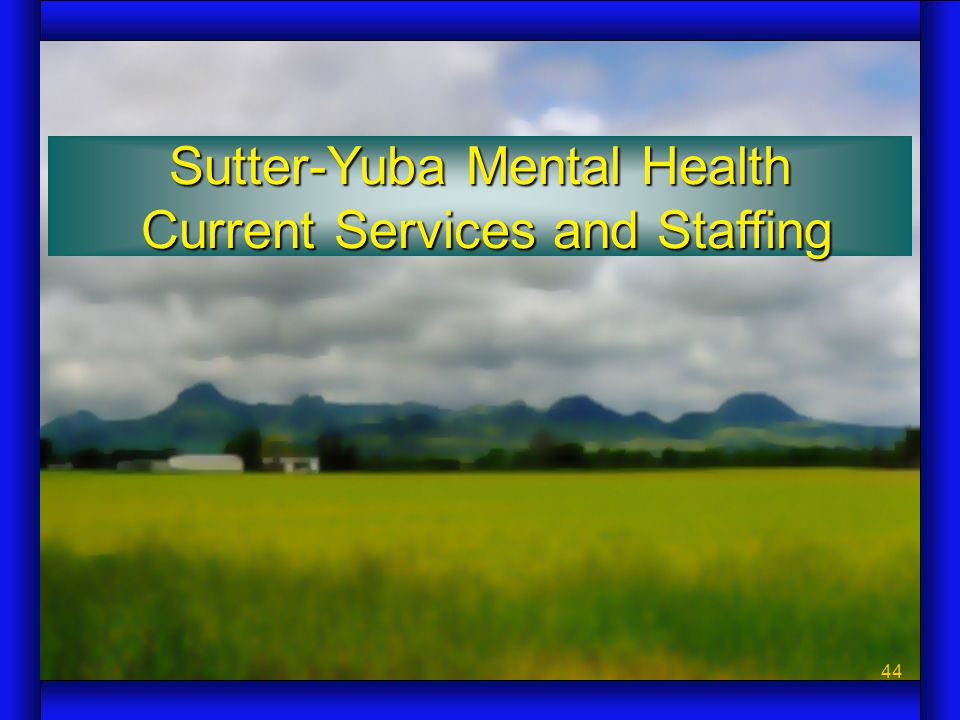 44 Sutter-Yuba Mental Health Current Services and Staffing