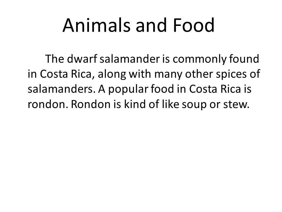 Animals and Food The dwarf salamander is commonly found in Costa Rica, along with many other spices of salamanders.