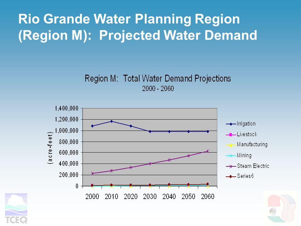 Rio Grande Water Planning Region (Region M): Projected Water Demand