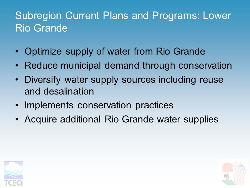 Subregion Current Plans and Programs: Lower Rio Grande Optimize supply of water from Rio Grande Reduce municipal demand through conservation Diversify