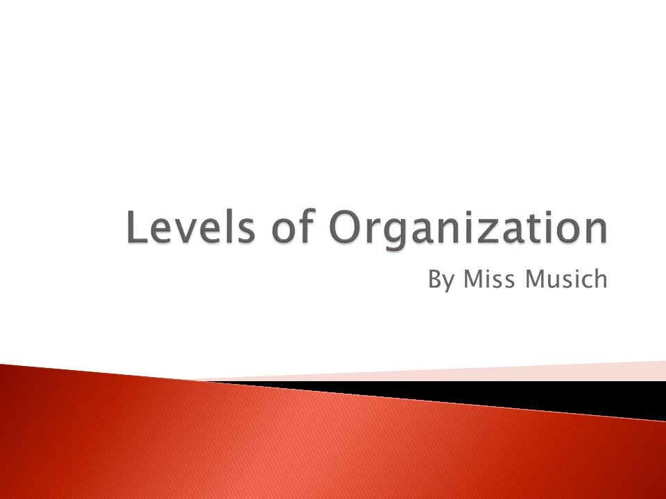  Organize – to put something in order ◦ We organize to make something more manageable.