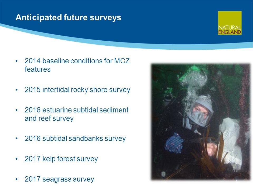 Anticipated future surveys 2014 baseline conditions for MCZ features 2015 intertidal rocky shore survey 2016 estuarine subtidal sediment and reef survey 2016 subtidal sandbanks survey 2017 kelp forest survey 2017 seagrass survey