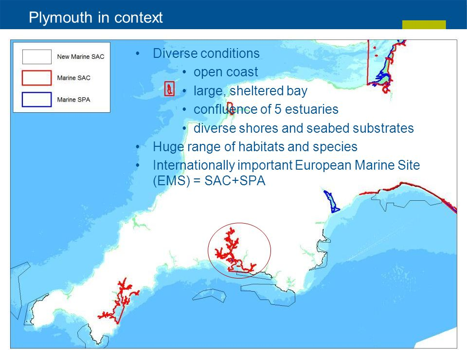 Plymouth in context Diverse conditions open coast large, sheltered bay confluence of 5 estuaries diverse shores and seabed substrates Huge range of habitats and species Internationally important European Marine Site (EMS) = SAC+SPA
