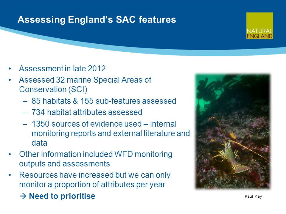 Assessing England's SAC features Assessment in late 2012 Assessed 32 marine Special Areas of Conservation (SCI) –85 habitats & 155 sub-features assessed –734 habitat attributes assessed –1350 sources of evidence used – internal monitoring reports and external literature and data Other information included WFD monitoring outputs and assessments Resources have increased but we can only monitor a proportion of attributes per year  Need to prioritise Paul Kay