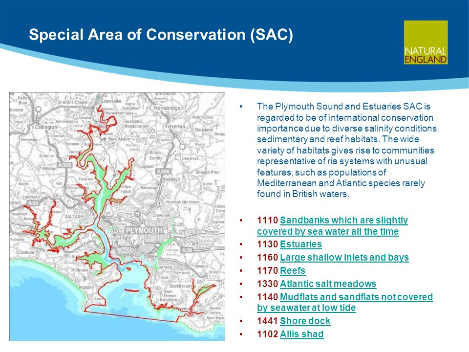 Special Area of Conservation (SAC) The Plymouth Sound and Estuaries SAC is regarded to be of international conservation importance due to diverse salinity conditions, sedimentary and reef habitats.
