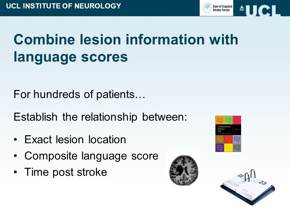 UCL INSTITUTE OF NEUROLOGY Combine lesion information with language scores For hundreds of patients… Establish the relationship between: Exact lesion location Composite language score Time post stroke