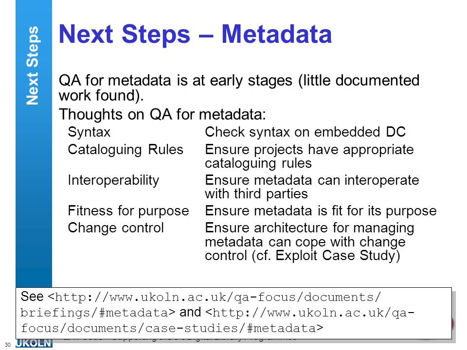 30 QA Focus – Supporting JISC s Digital Library Programmes Next Steps – Metadata QA for metadata is at early stages (little documented work found).