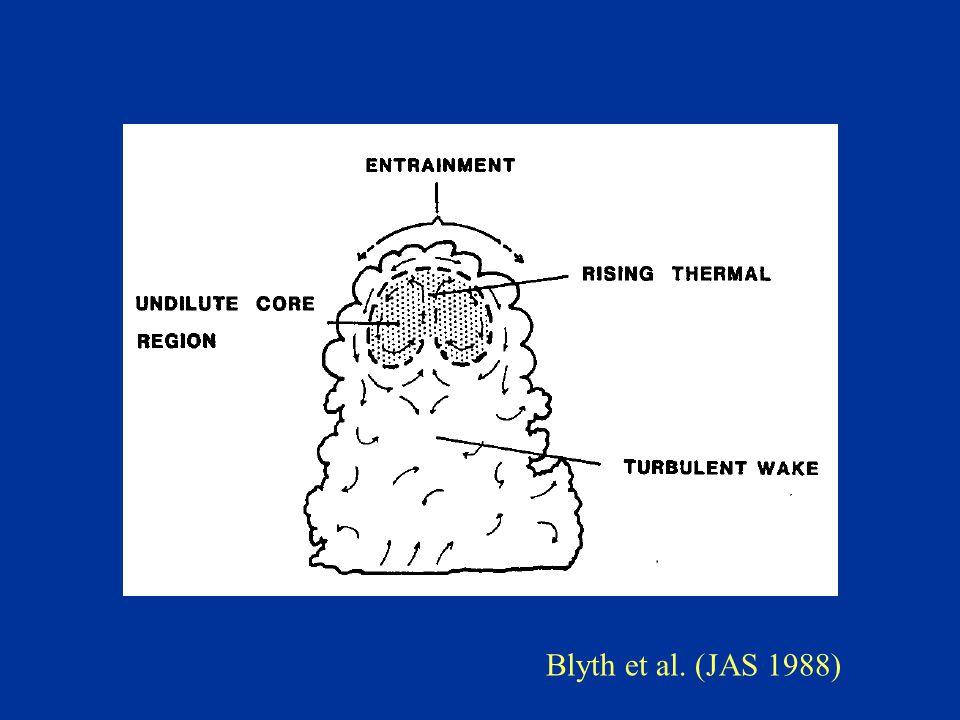Blyth et al. (JAS 1988)