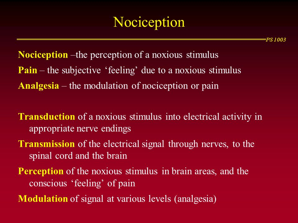 Nociception Nociception –the perception of a noxious stimulus Pain – the subjective 'feeling' due to a noxious stimulus Analgesia – the modulation of