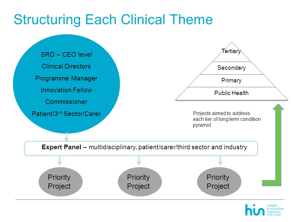Structuring Each Clinical Theme Tertiary Secondary Primary Public Health SRO – CEO level Clinical Directors Programme Manager Innovation Fellow Commissioner Patient/3 rd Sector/Carer Expert Panel – multidisciplinary, patient/carer/third sector and industry Priority Project Projects aimed to address each tier of long term condition pyramid