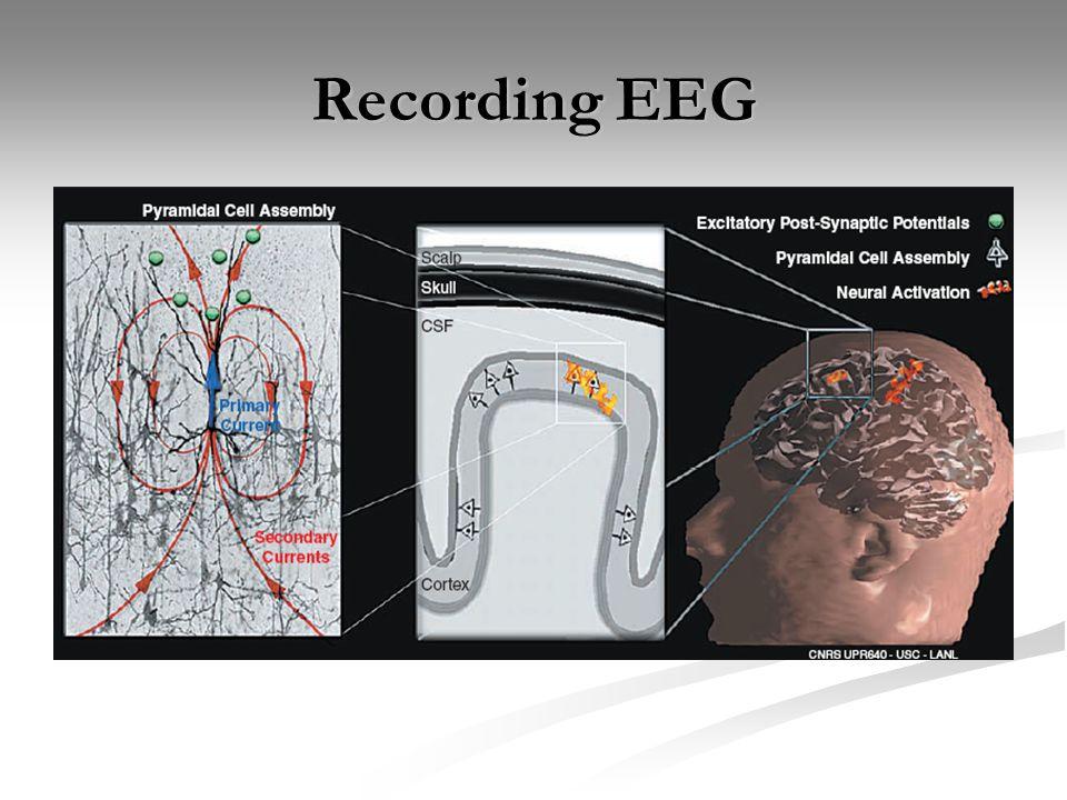 Recording EEG