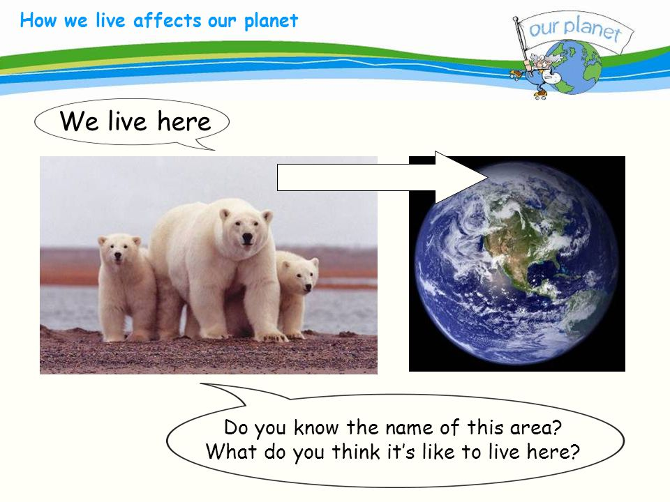 What size is your carbon footprint.