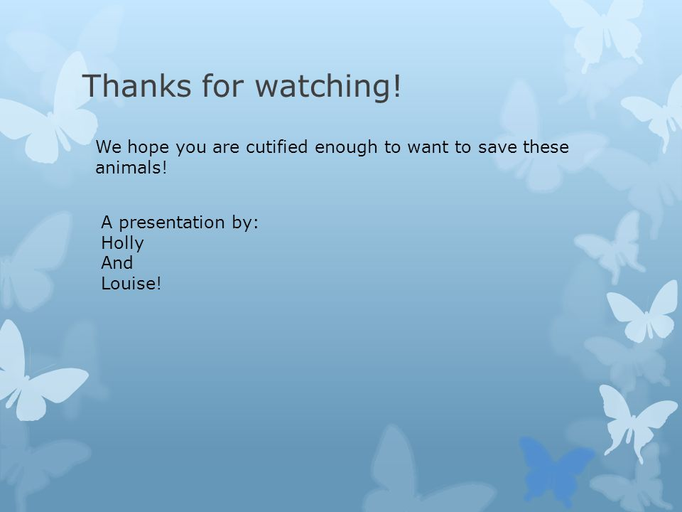 Thanks for watching! We hope you are cutified enough to want to save these animals! A presentation by: Holly And Louise!