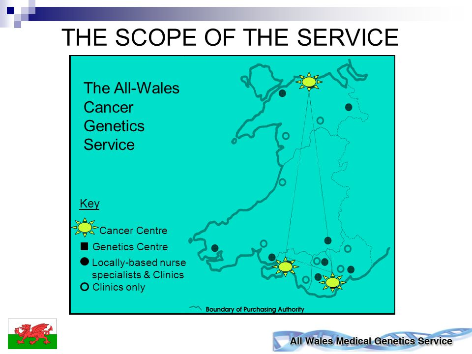 An All Wales Service