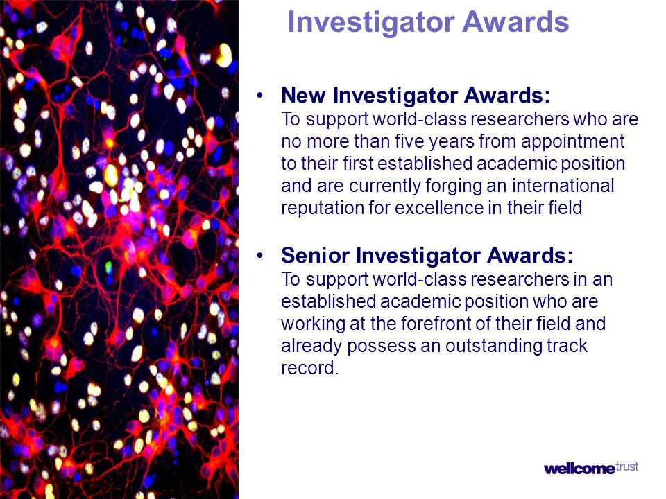 Investigator Awards New Investigator Awards: To support world-class researchers who are no more than five years from appointment to their first established academic position and are currently forging an international reputation for excellence in their field Senior Investigator Awards: To support world-class researchers in an established academic position who are working at the forefront of their field and already possess an outstanding track record.