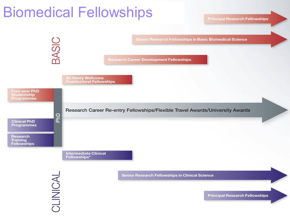 Biomedical Fellowships