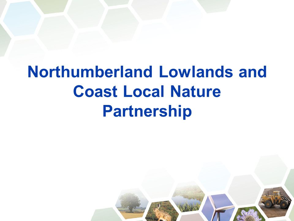 Northumberland Lowlands and Coast Local Nature Partnership