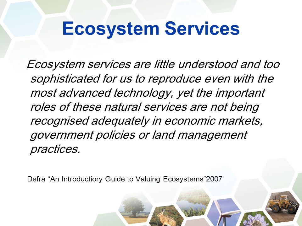 Ecosystem Services Ecosystem services are little understood and too sophisticated for us to reproduce even with the most advanced technology, yet the
